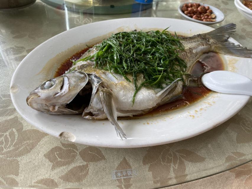 中国版の食べログ、大众点评は結構使えるかも
